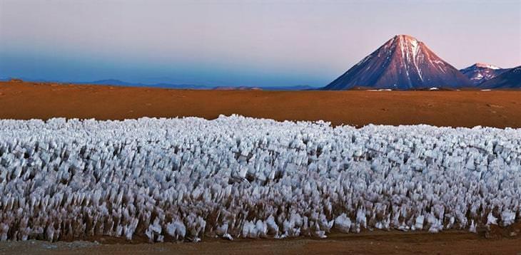 תופעות טבע צבעוניות: קוצי הקרח של צפון צ'ילה
