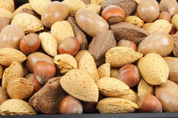 תזונאים מגלים אילו מאכלים הם אורזים לילדיהם לבית הספר: אגוזים