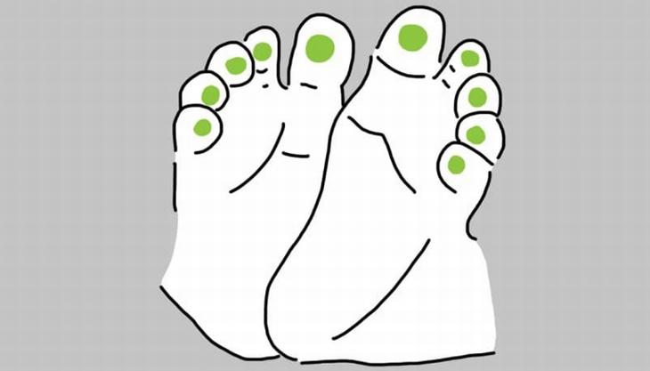 נקודות לחיצה בכפות רגלי תינוקות: איור של רגלי תינוק עם סימון על אזור כריות האצבעות