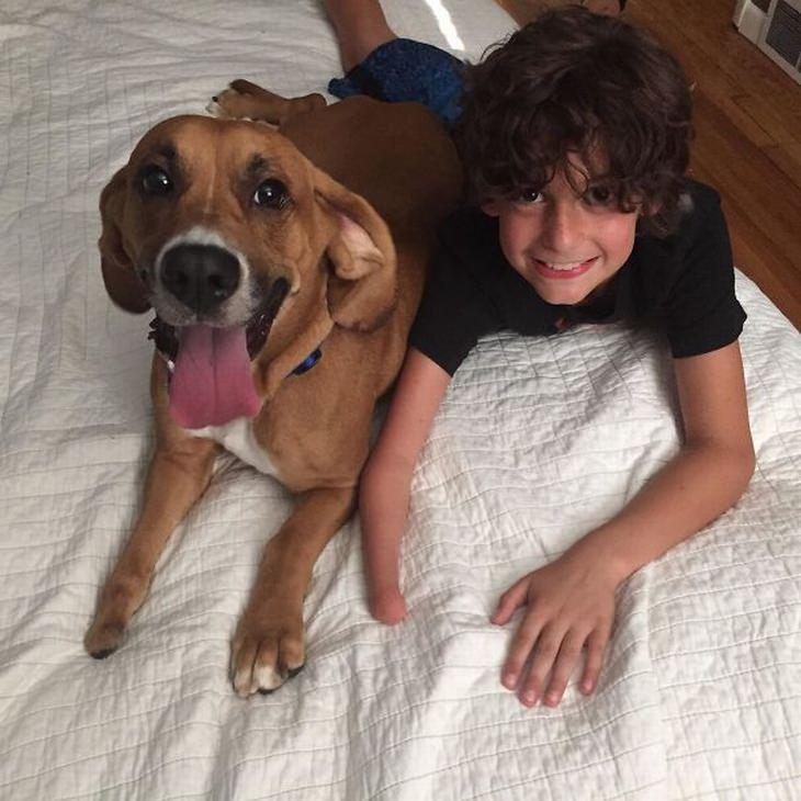 ילדים וכלבים: ילד ללא כף יד וכלב ללא כף רגל