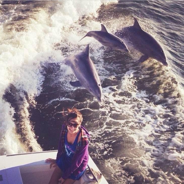 שלמות טבעית מדהימה: איזה בשירה ומאחוריה 3 דולפינים