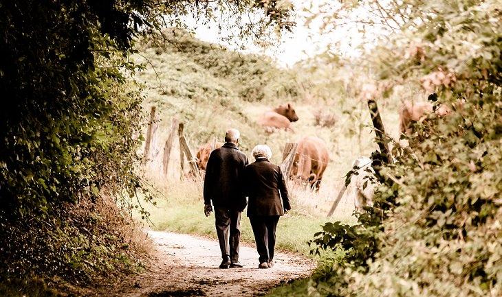 שיר משעשע על גיל הזהב: זוג מבוגרים מטייל בטבע