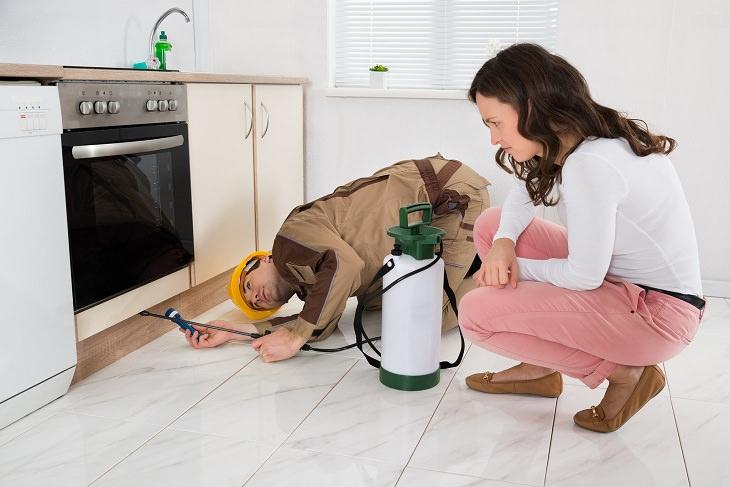 הדברה לבית: אישה ומדביר במטבח