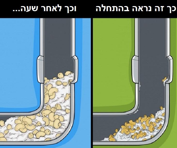 דברים שסותמים את הצנרת: איור של סתימה המתרחשת בעקבות הצטברות פסטה ואורז