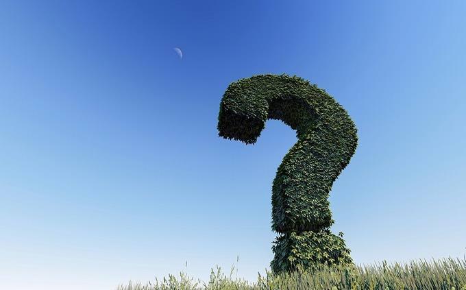 מבחן טריוויה בעברית: שיח גזום כסימן שאלה