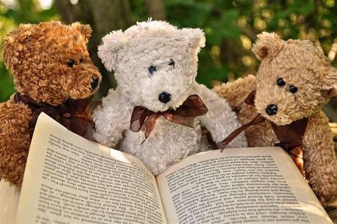 בחן את עצמך: 3 בובות דובי יושבות ליד ספר פתוח
