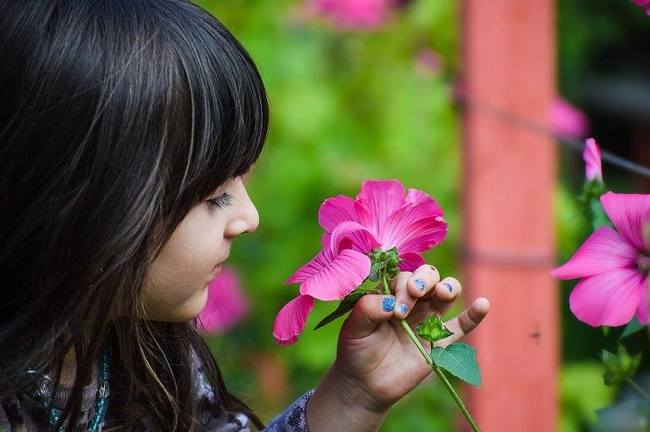יתרונות בריאותיים של חזרת: ילדה מריחה פרח