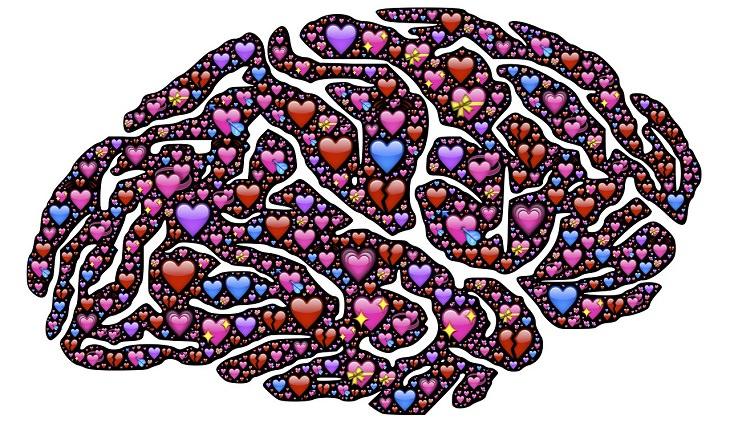 מה קורה במוח בזמן התאהבות: איור של מוח המלא בסמלים של לבבות