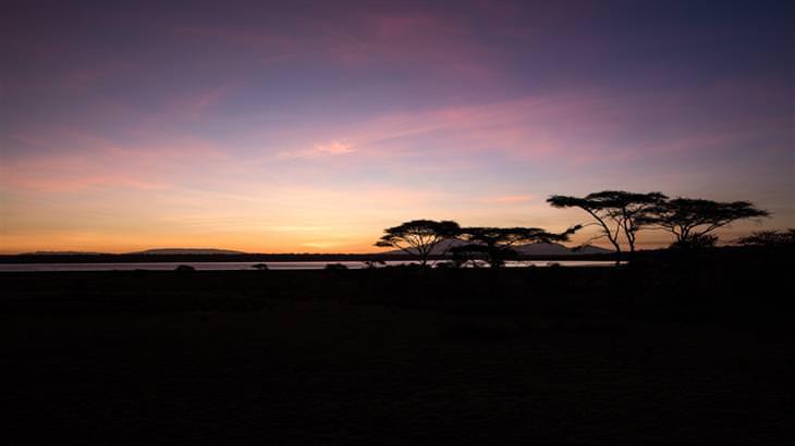 תצלומים מטנזניה:
