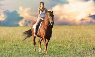 מבחן מצא את ההבדלים: אישה רוכב על סוס