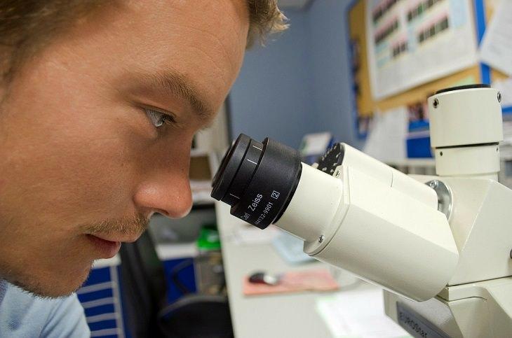 שיפור הפוריות הגברית: גבר מביט במיקרוסקופ