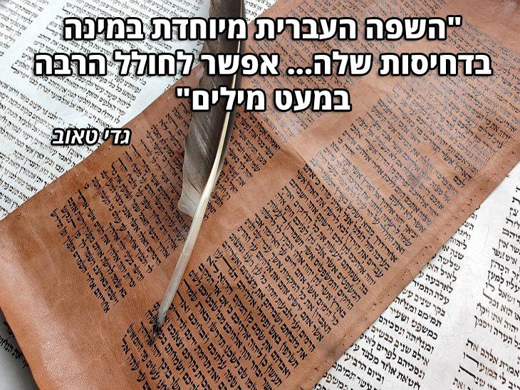 """ציטוטי סופרים עבריים: •""""השפה העברית מיוחדת במינה בדחיסות שלה...אפשר לחולל הרבה במעט מילים"""" – גדי טאוב"""