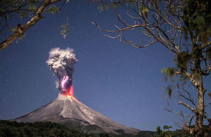 """זוכי תחרות התמונות של החברה לשימור הטבע: """"אנרגיה ואש טהורות"""""""