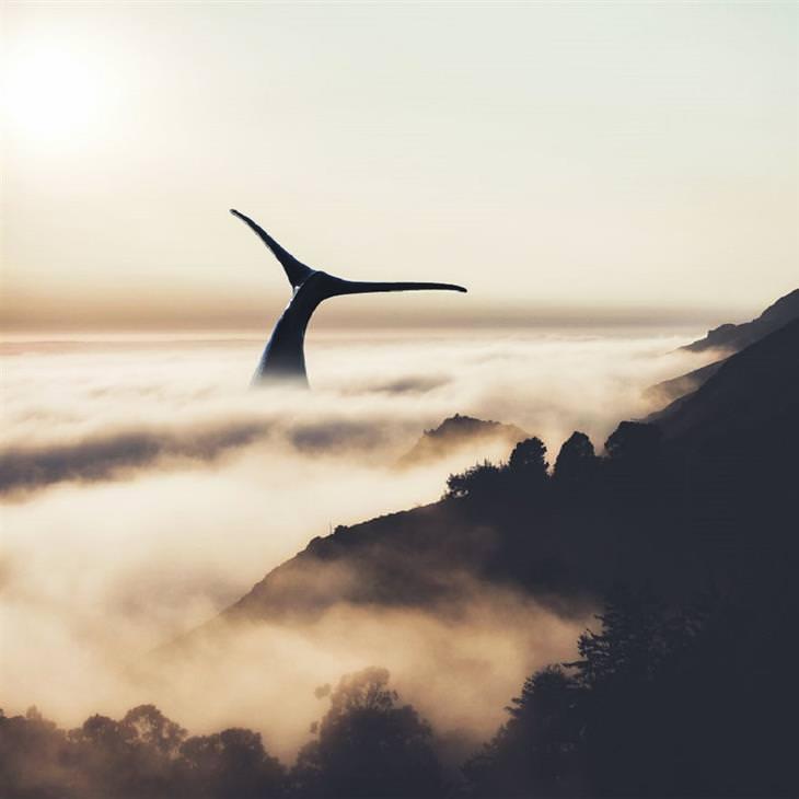תמונות של האמן ג'סטין פטרס: לוויתן בערפל