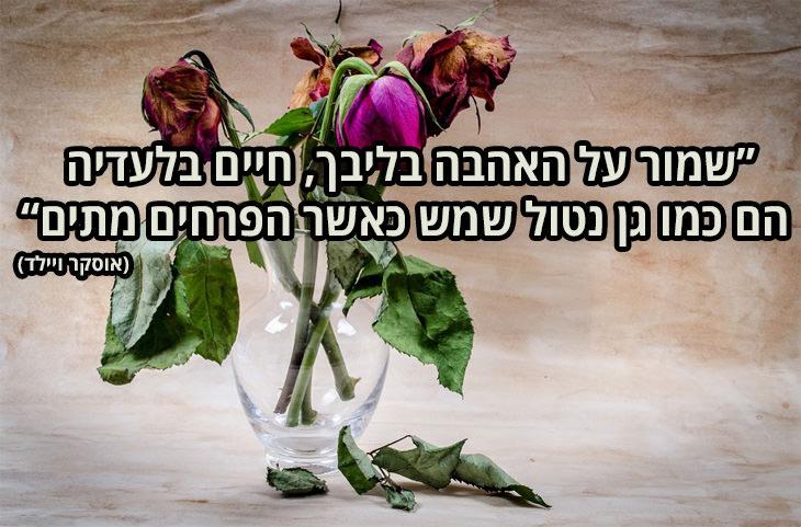ציטוטי אהבה: שמור על אהבה בליבך, חיים בלעדיה הם כמו גן נטול שמש כאשר הפרחים מתים