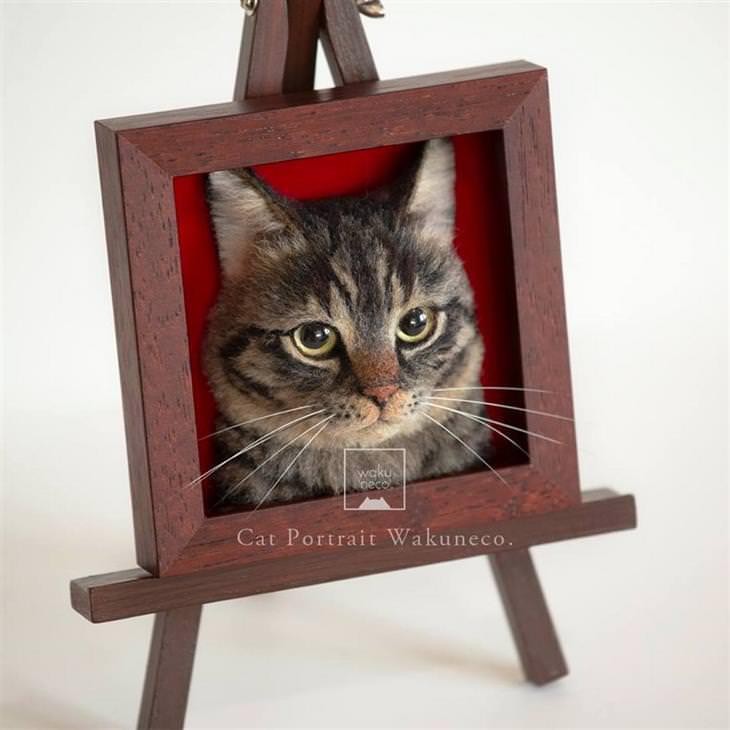 דיוקנאות של חתולים: דיוקן של חתול במסגרת