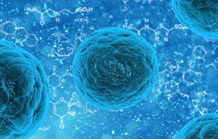 יתרונות השימוש בתוסף אסטזנטין: תאים ונוסחאות כימיות