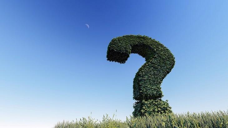שאלות לשאול את ילדיכם הקטנים: שיח מעוצב בתור סימן שאלה