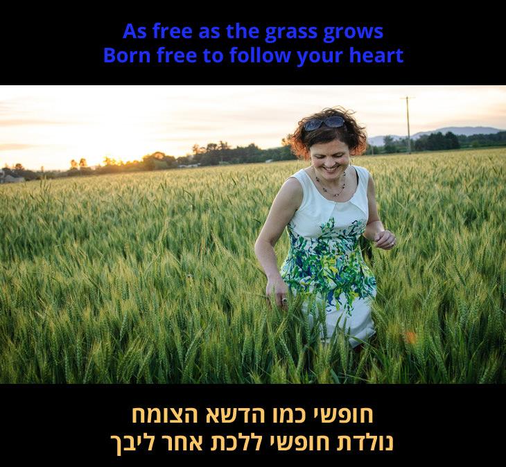 """""""נולדת חופשי"""" - שירו של מאט מונרו: """"חופשי כמו הדשא הצומח נולדת חופשי ללכת אחר ליבך"""""""