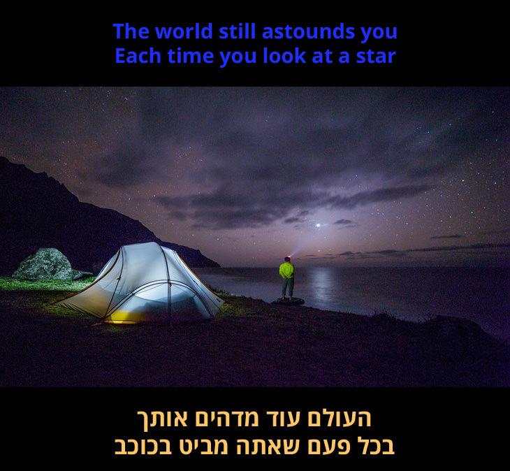 """""""נולדת חופשי"""" - שירו של מאט מונרו: """"העולם עוד מדהים אותך בכל פעם שאתה מביט בכוכב"""""""