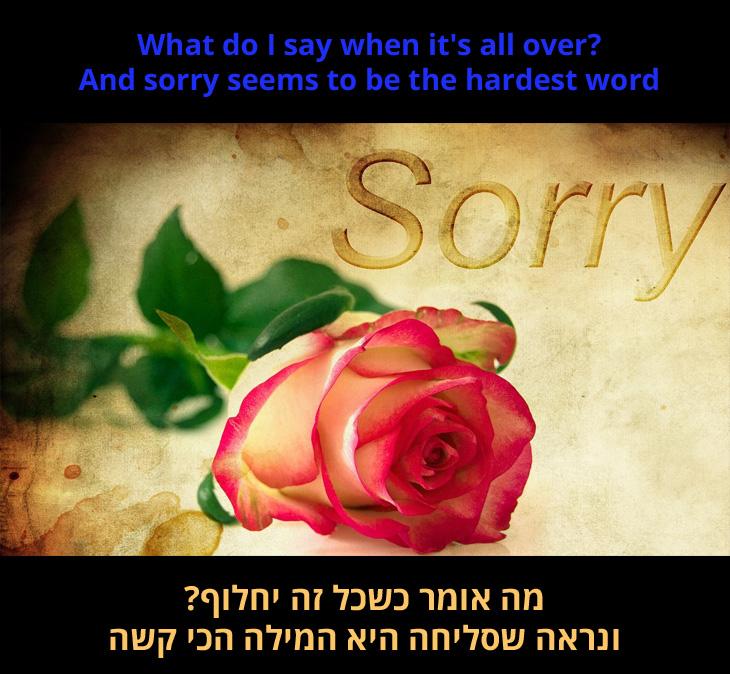 """מצגת לשיר Sorry Seems to be The Hardest Word: מה אומר כשכל זה יחלוף? ונדמה ש""""סליחה"""" היא המילה הכי קשה"""