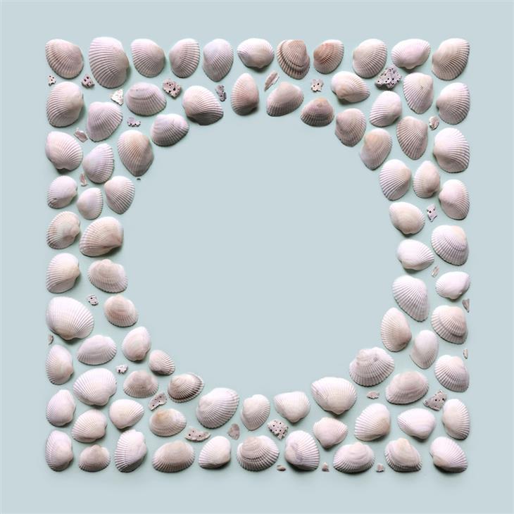יצירות סימטריות של קריסטן מייר: יצירה מצדפים