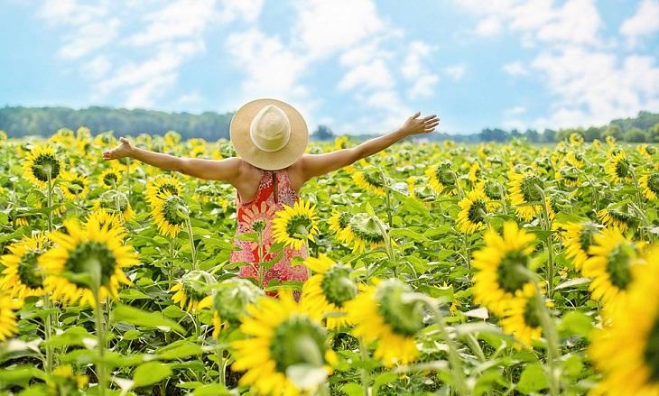 עצות לחיים טובים ומספקים: אישה בשדה חמניות