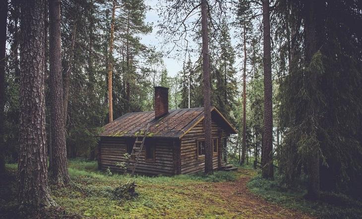 בדיחה על מסיבה ביער: בקתה ביער
