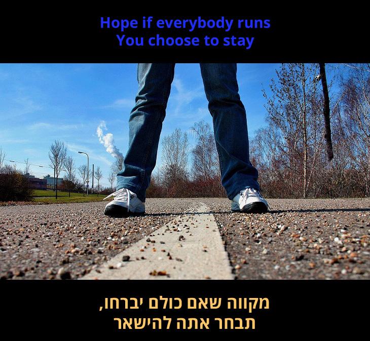 """מצגת שיר - חייתי של להקת ואן ריפבליק: """"מקווה שאם כולם יברחו, תבחר אתה להישאר"""""""