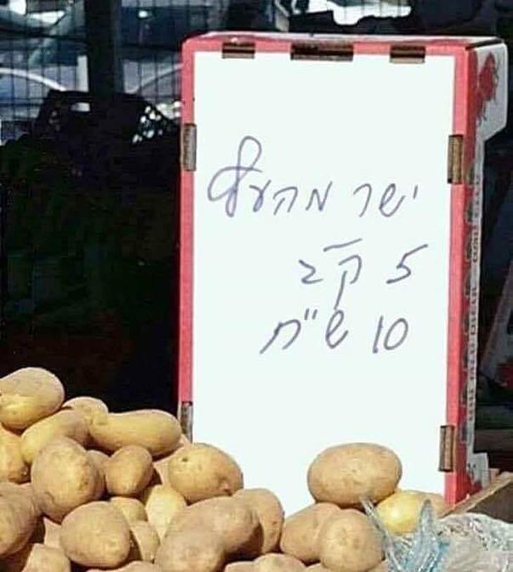 """שלטים מצחיקים: שלט """"ישר מהעץ"""" על תפוחי אדמה"""