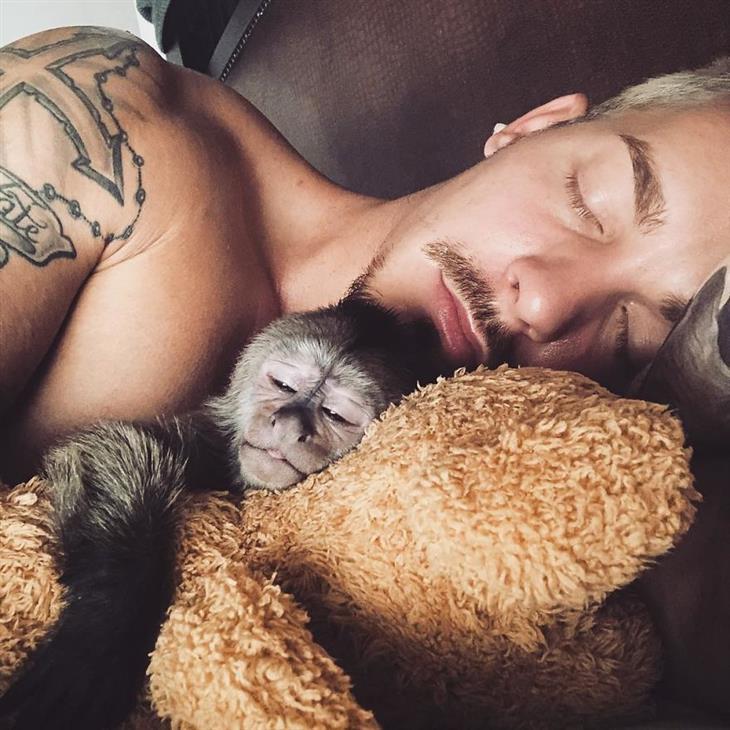 שניידר וחיות בר: ישן עם קוף