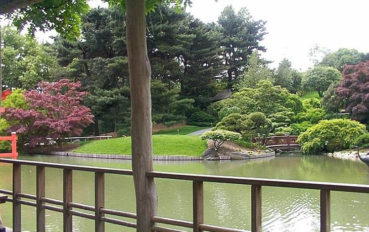 גנים בוטניים בניו יורק: אגם יפה
