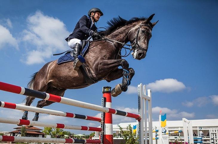 התמודדות עם תקופה קשה: רוכב על סוס עובר משוכה