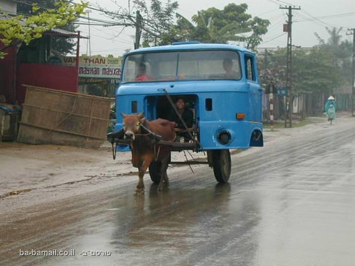 עגלה עם סוס מיוחדת