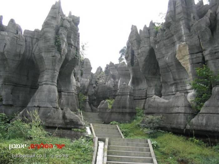 יער הסלעים, יאמנון