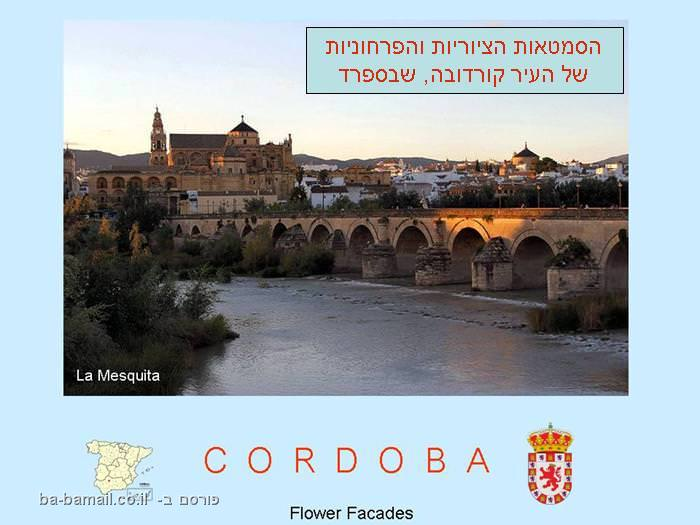 קורדובה, ספרד, תמונה, פרחים, טיול
