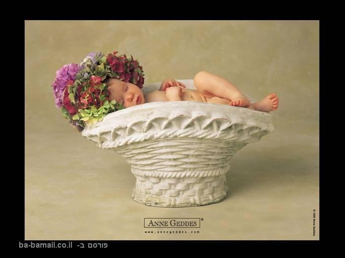 תינוקות, תינוק, אן גדס, עציץ, תינוק בעציץ