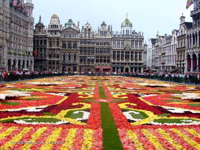 שטיח פרחים, פרחים, בריסל, גראן-פאלאס
