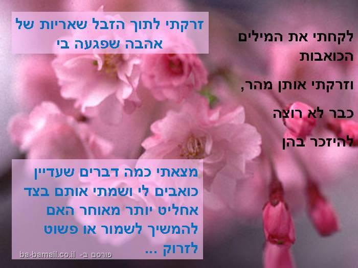 ניקיון מגרות ליבי, פואמה, פרחים, נשים, ראש השנה