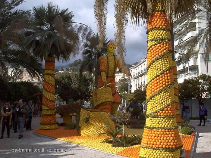 תפוזים, סיטרוטוב, צרפת, פסטיבל