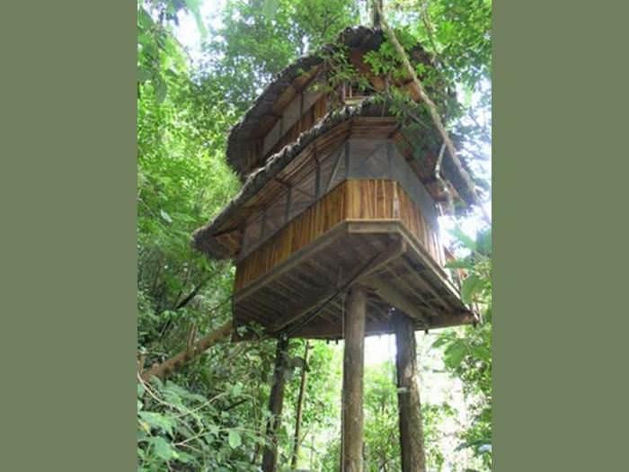 כפר מדהים בקוסטה ריקה המתקיים בכוחות עצמו