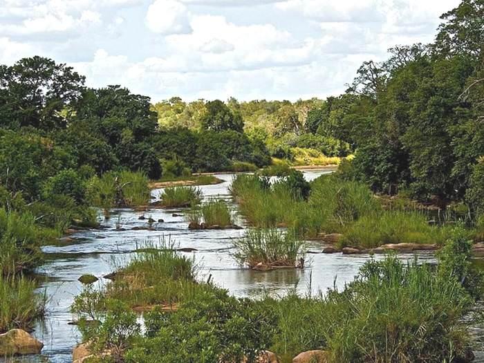 זוהי אפריקה: פארק לאומי בגודלה של מדינת ישראל