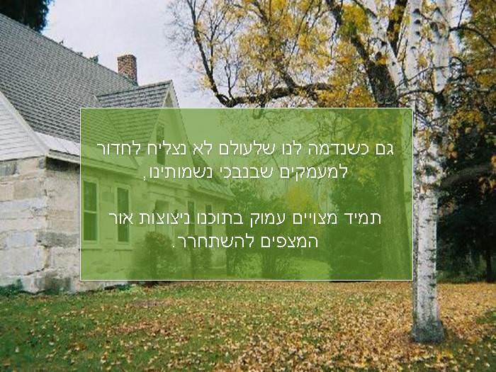 הנוסחה לאושר - מחוכמתו של רבי נחמן מברסלב