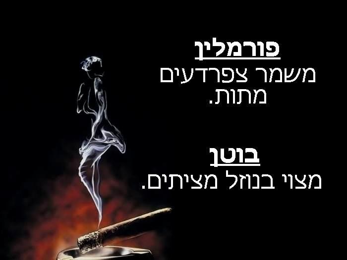יום ללא עישון: כדאי שתדעו מה מכילה סיגריה