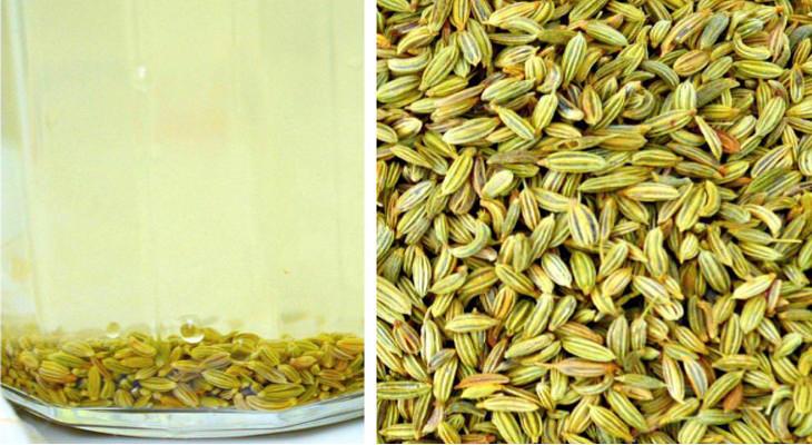 מתכון לחליטת זרעי שומר