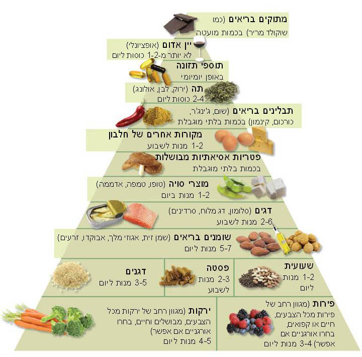 פירדמידת מזון