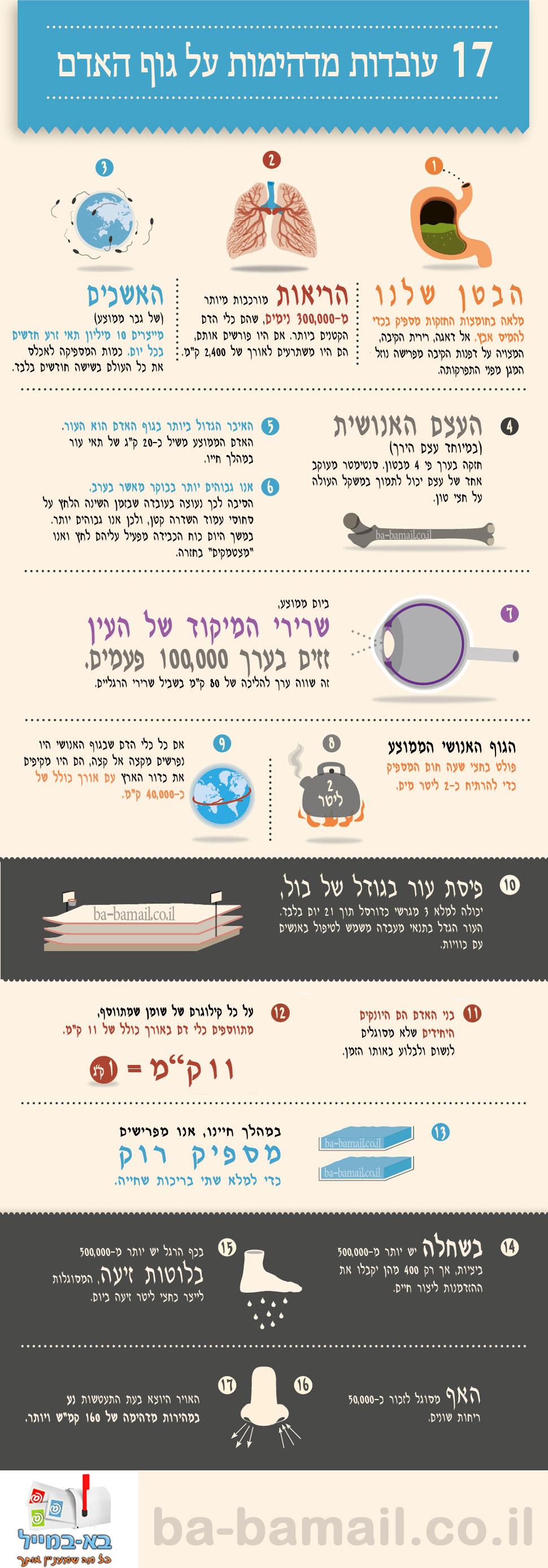 17 עובדות מעניינות על גוף האדם