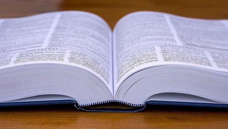 התפתחות השפה העברית: ספר פתוח