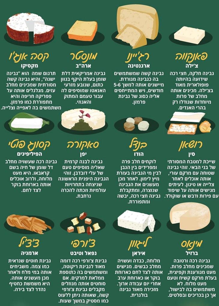 51 סוגי גבינות מרחבי העולם