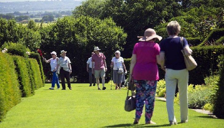 מועדון לבני 60+: מבוגרים בטיול בגנים